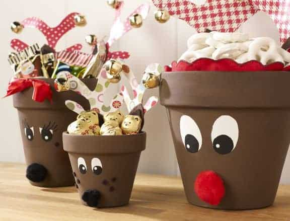 reindeer-pot-family