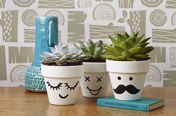 funny-faces-plant-pots