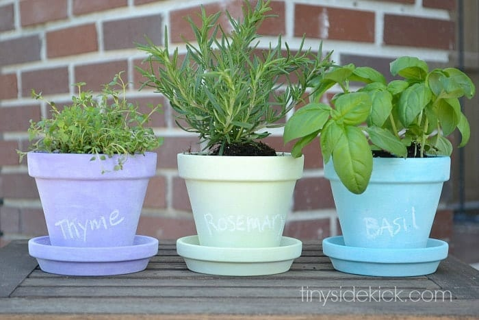 mini-herb-garden-with-chalkboard-painted-pots
